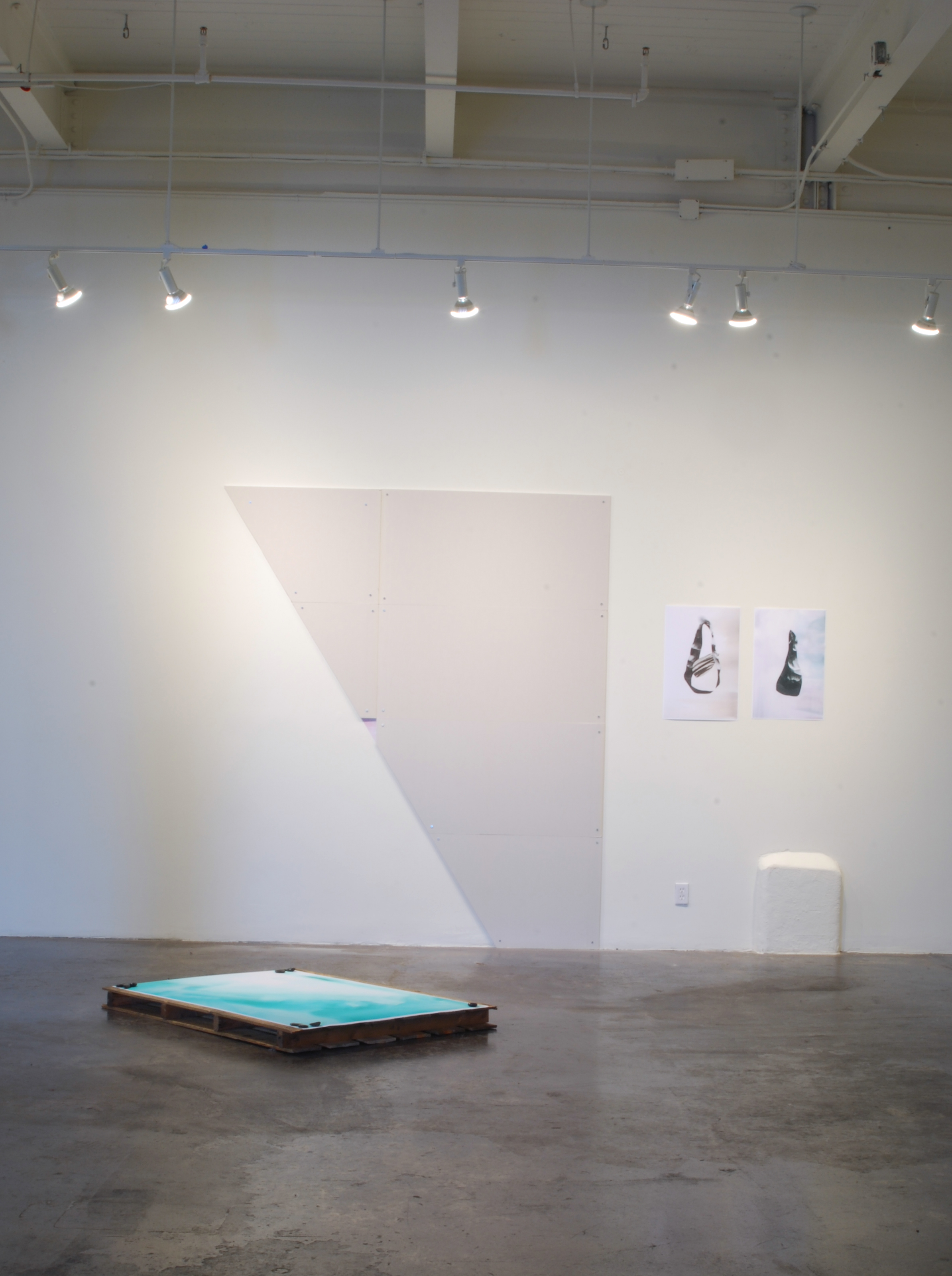 Divinely Superfluous Beauty, 2014, archival prints, palette, drywall